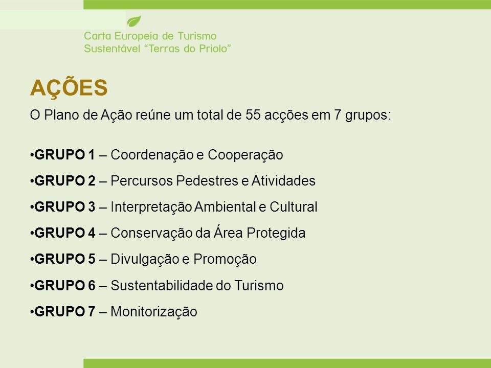 AÇÕES O Plano de Ação reúne um total de 55 acções em 7 grupos: