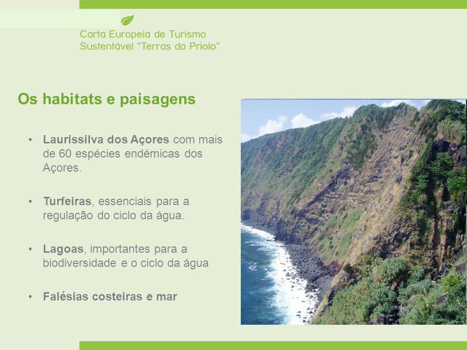 Os habitats e paisagens