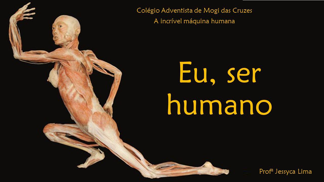 Colégio Adventista de Mogi das Cruzes A incrível máquina humana