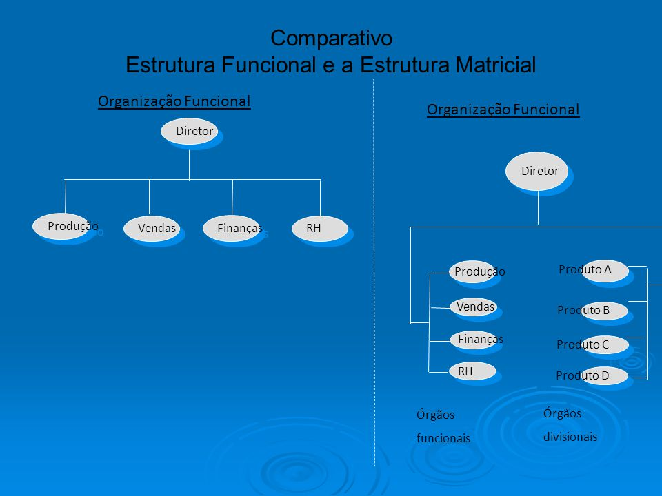 Estrutura Funcional e a Estrutura Matricial