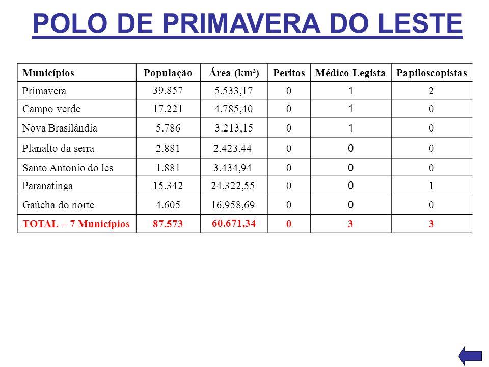 POLO DE PRIMAVERA DO LESTE