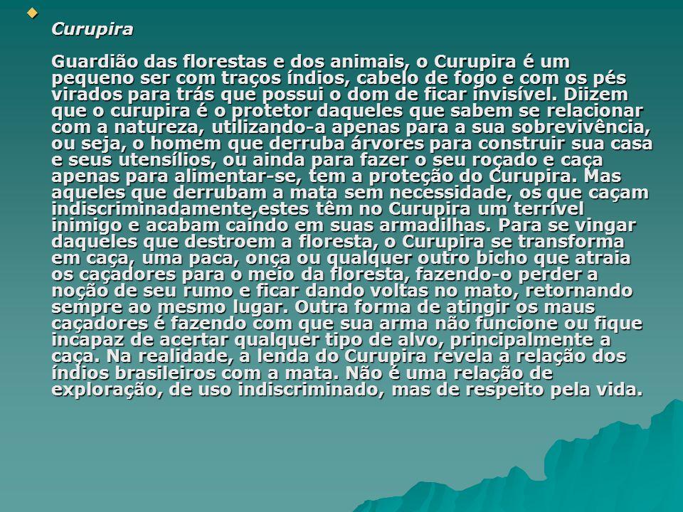 Curupira Guardião das florestas e dos animais, o Curupira é um pequeno ser com traços índios, cabelo de fogo e com os pés virados para trás que possui o dom de ficar invisível.