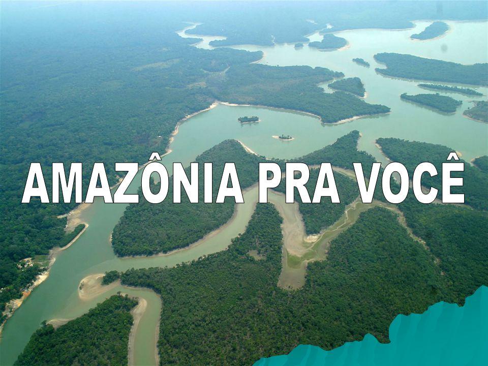 AMAZÔNIA PRA VOCÊ