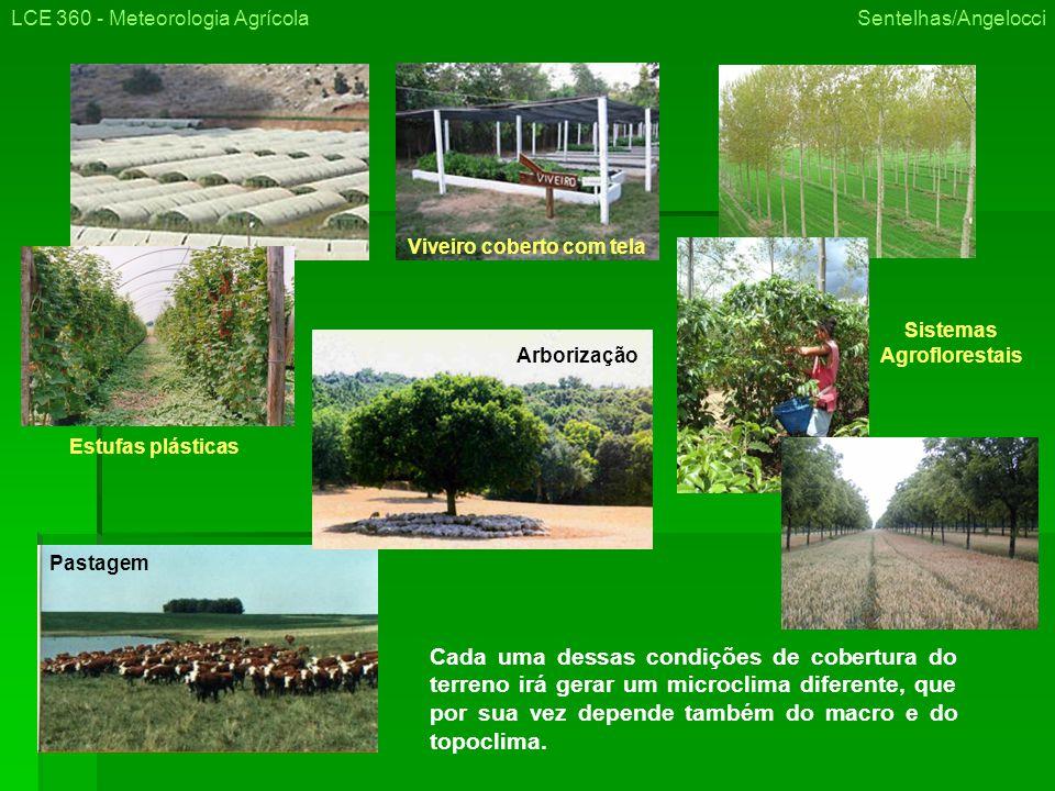 Viveiro coberto com tela Sistemas Agroflorestais