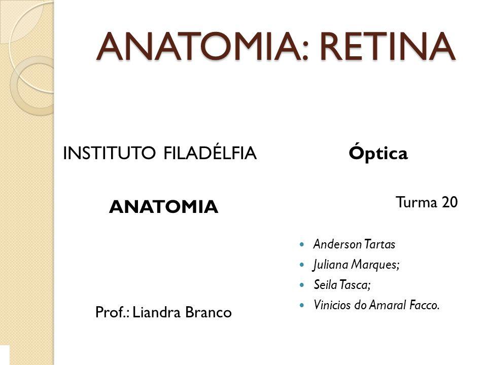ANATOMIA: RETINA INSTITUTO FILADÉLFIA ANATOMIA Óptica Turma 20