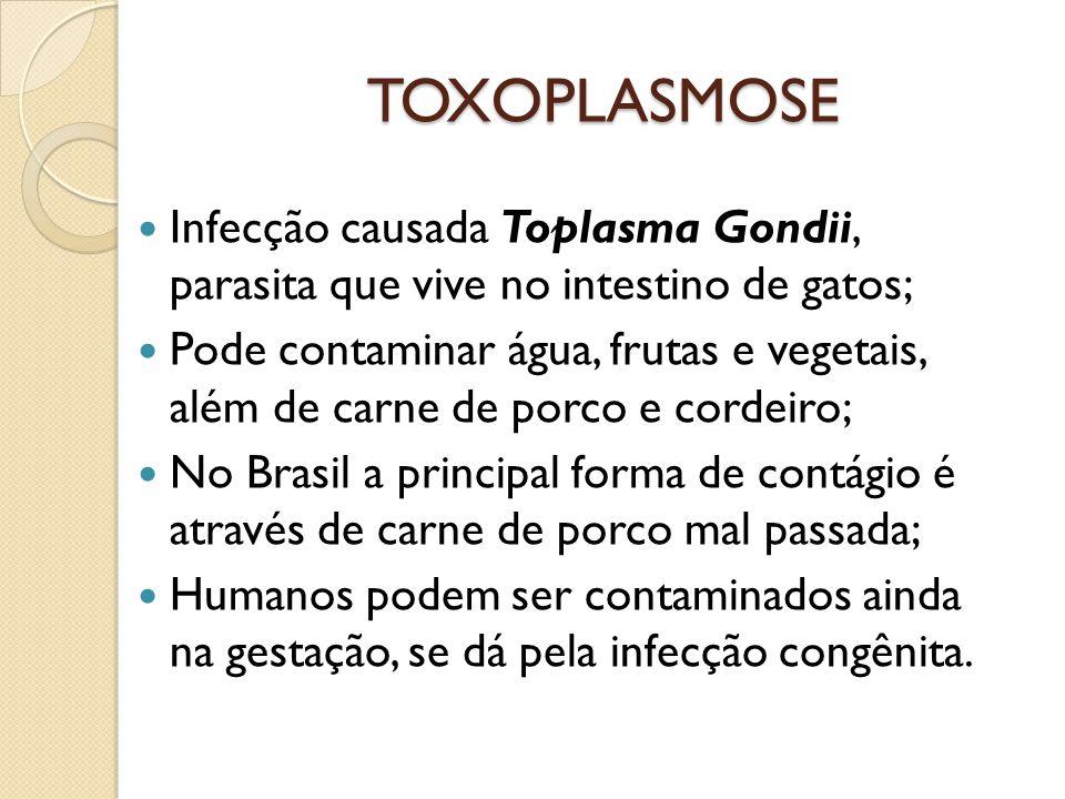 TOXOPLASMOSE Infecção causada Toplasma Gondii, parasita que vive no intestino de gatos;