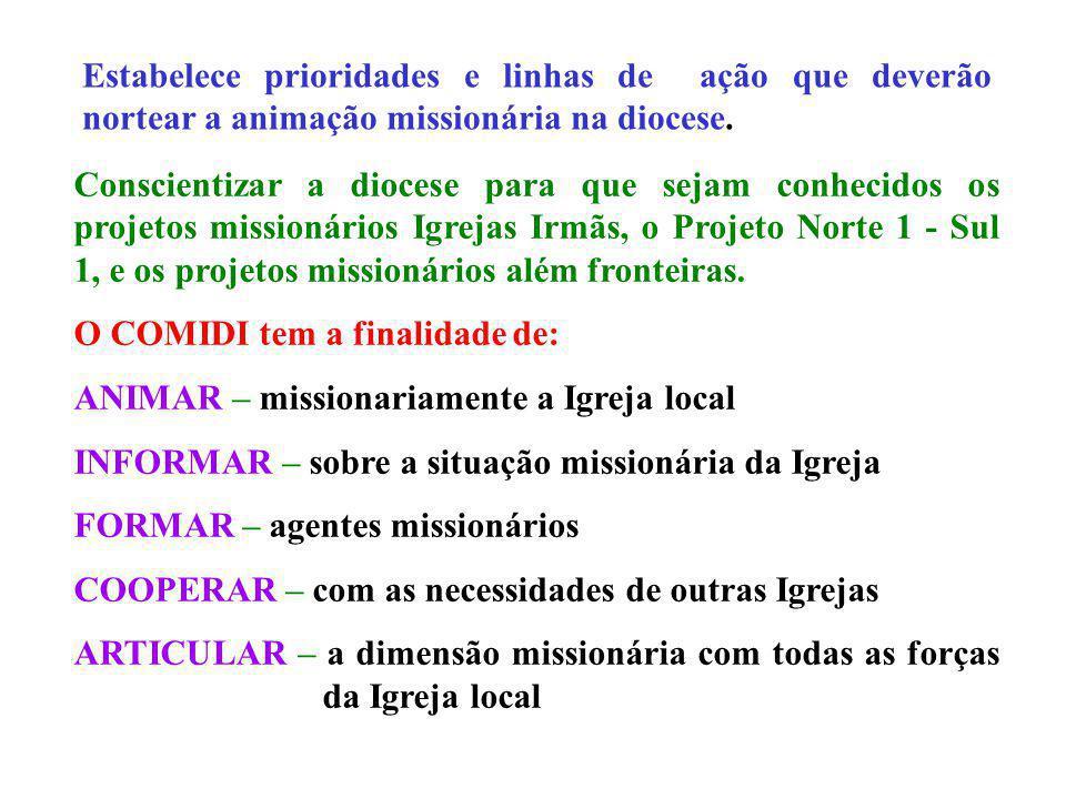 Estabelece prioridades e linhas de ação que deverão nortear a animação missionária na diocese.