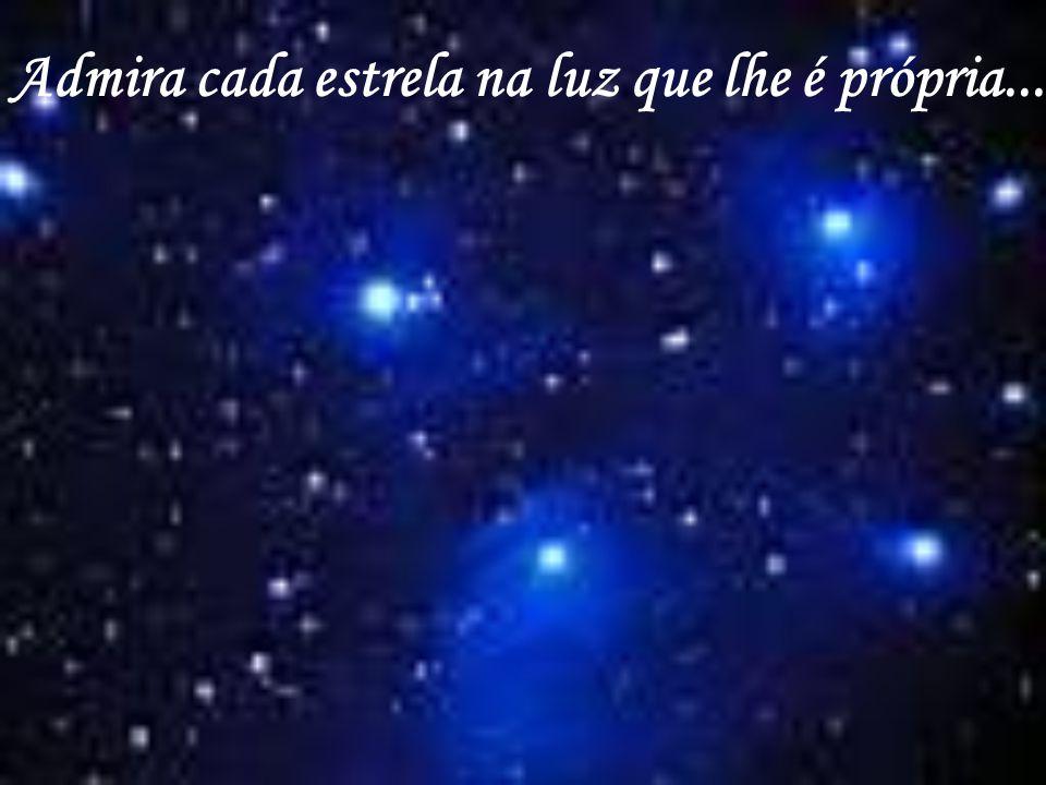 Admira cada estrela na luz que lhe é própria...