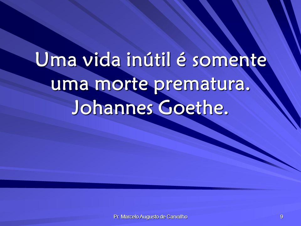 Uma vida inútil é somente uma morte prematura. Johannes Goethe.