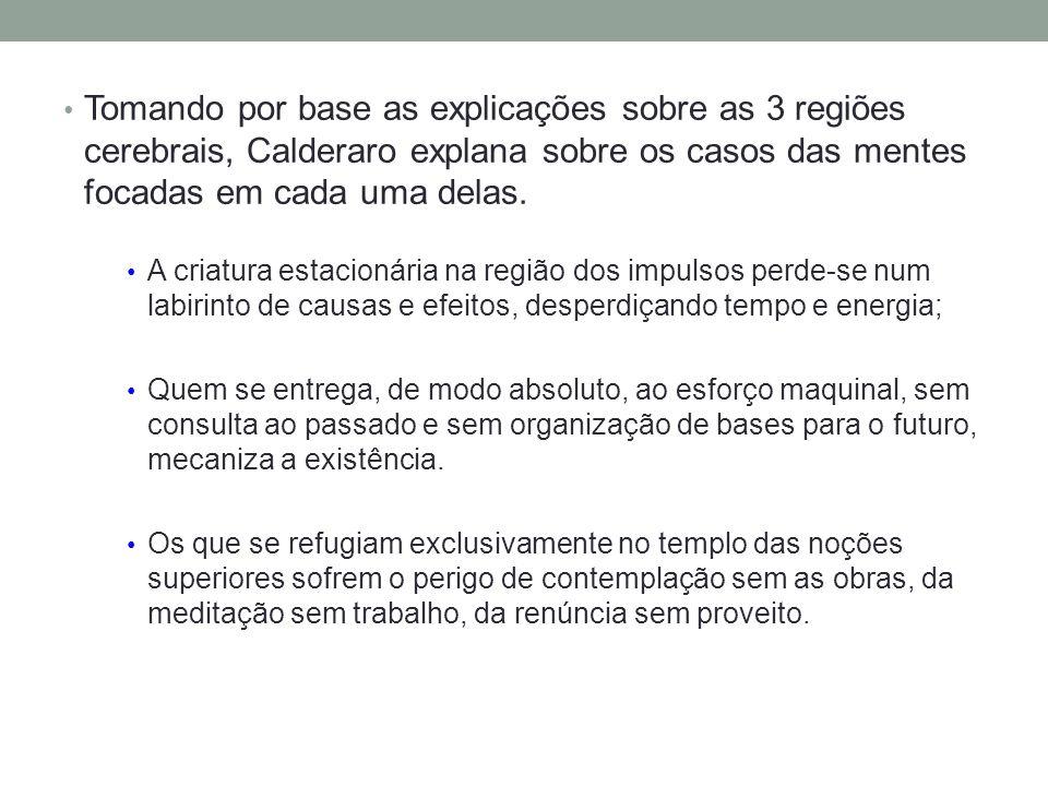 Tomando por base as explicações sobre as 3 regiões cerebrais, Calderaro explana sobre os casos das mentes focadas em cada uma delas.
