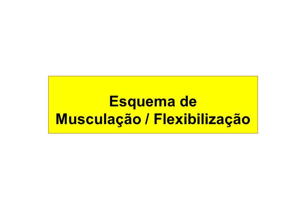 Esquema de Musculação / Flexibilização