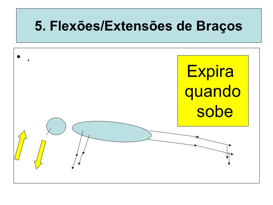 5. Flexões/Extensões de Braços
