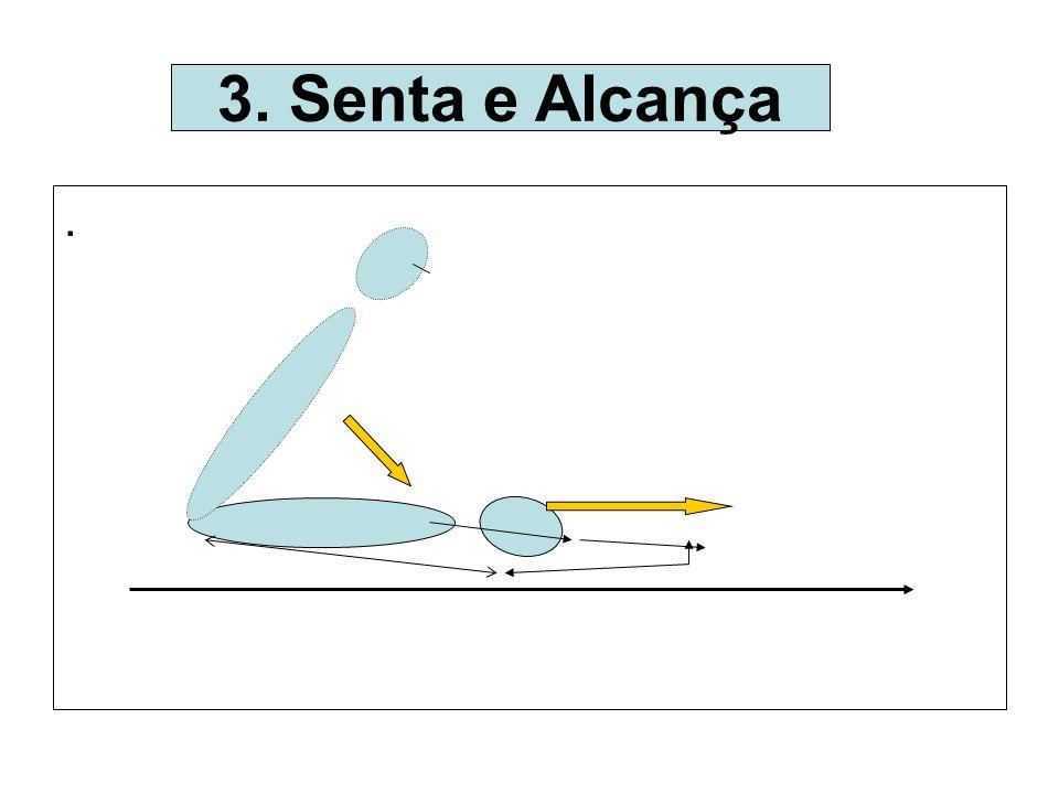 . 3. Senta e Alcança .