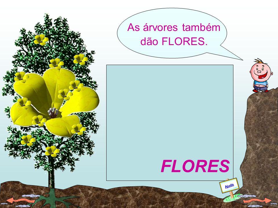 As árvores também dão FLORES.