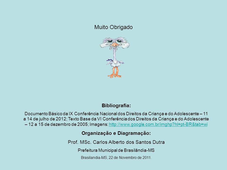 Organização e Diagramação: