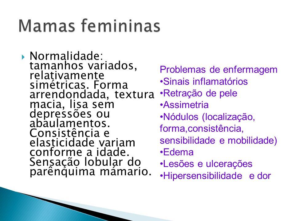 Mamas femininas