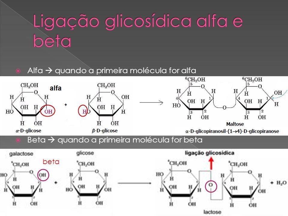 Ligação glicosídica alfa e beta