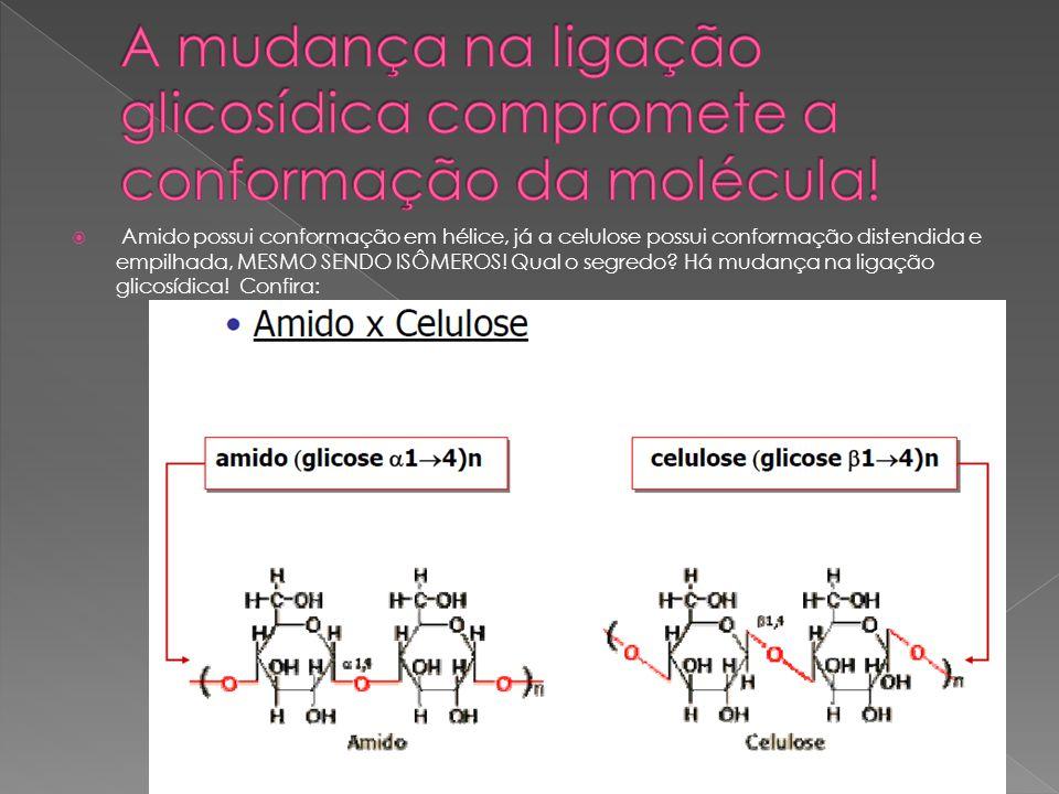 A mudança na ligação glicosídica compromete a conformação da molécula!