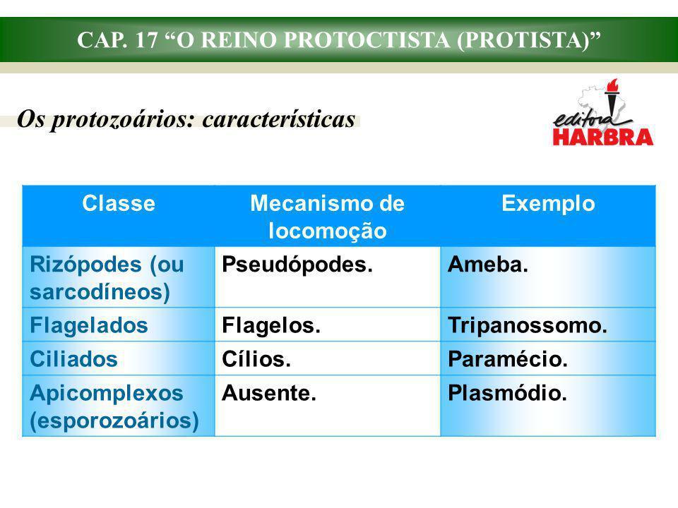 CAP. 17 O REINO PROTOCTISTA (PROTISTA) Mecanismo de locomoção