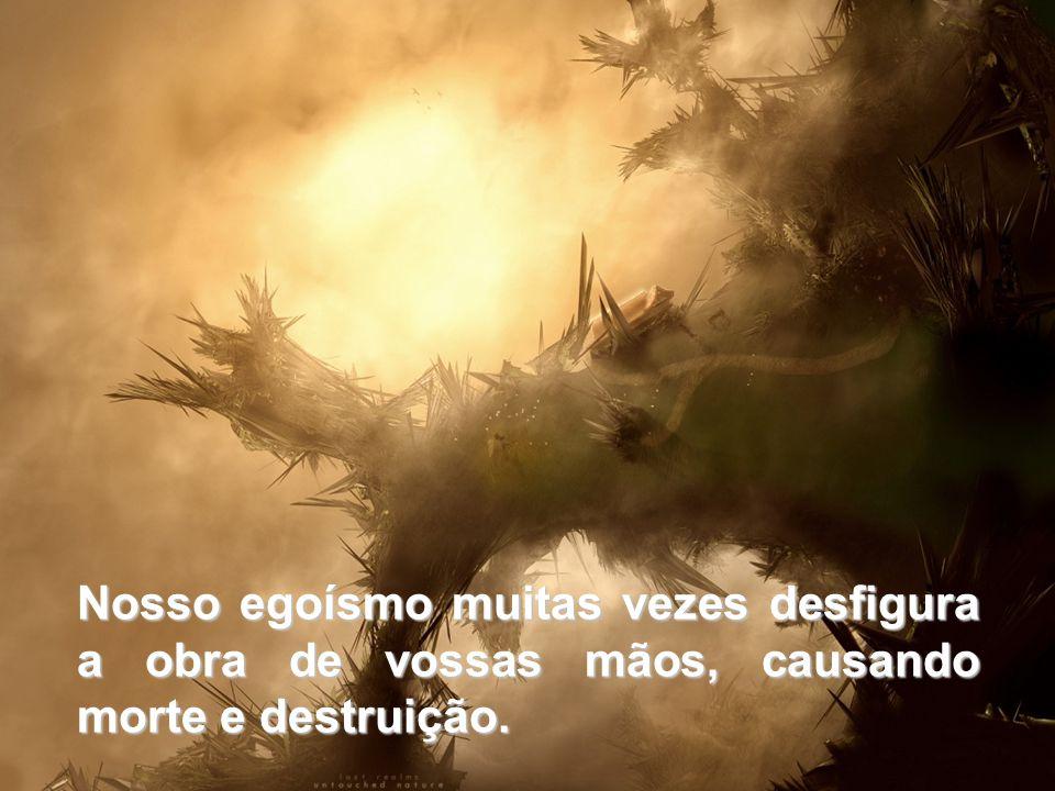 Nosso egoísmo muitas vezes desfigura a obra de vossas mãos, causando morte e destruição.
