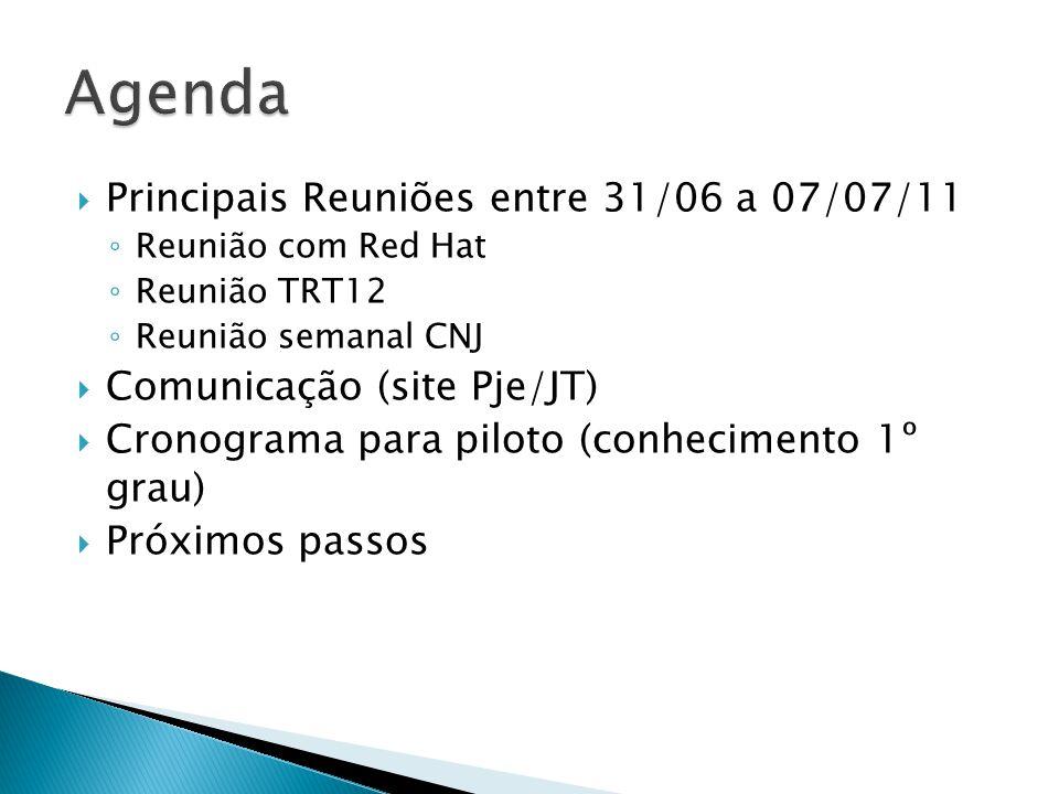 Agenda Principais Reuniões entre 31/06 a 07/07/11
