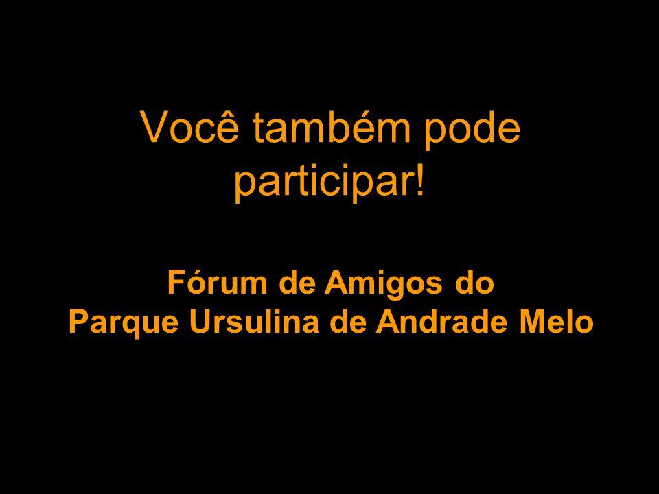 Você também pode participar!