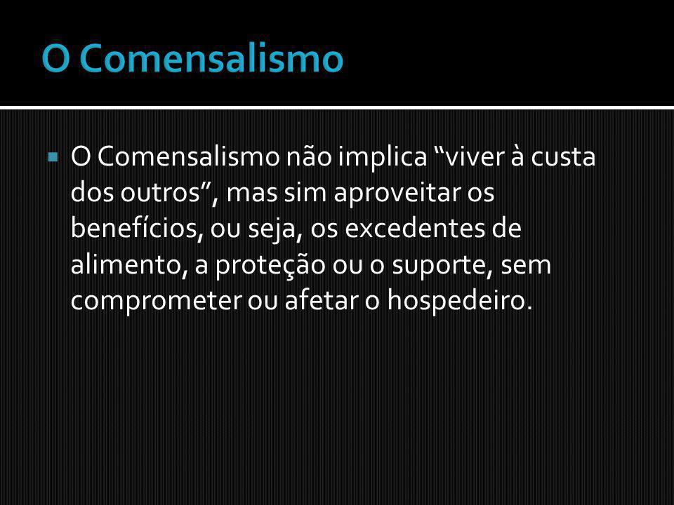 O Comensalismo
