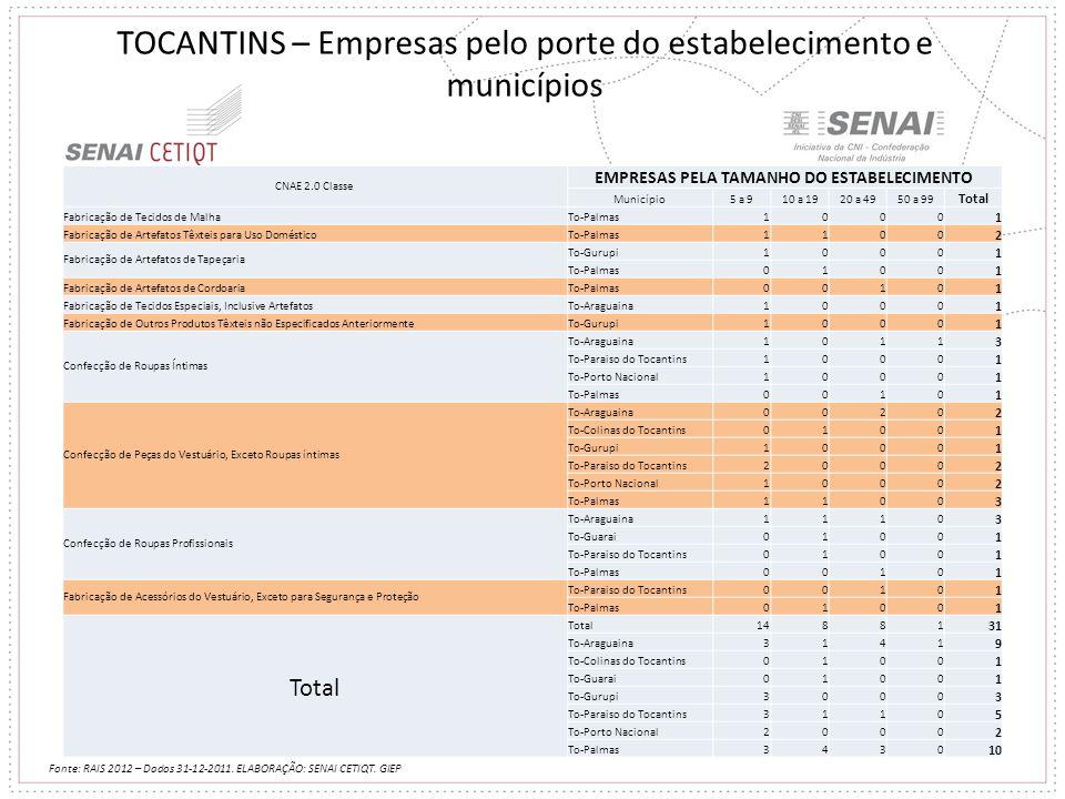 TOCANTINS – Empresas pelo porte do estabelecimento e municípios