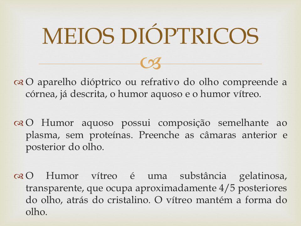 MEIOS DIÓPTRICOS O aparelho dióptrico ou refrativo do olho compreende a córnea, já descrita, o humor aquoso e o humor vítreo.