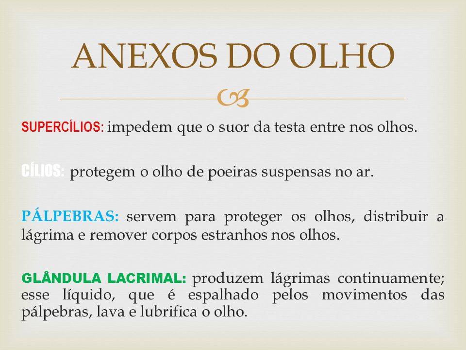 ANEXOS DO OLHO CÍLIOS: protegem o olho de poeiras suspensas no ar.