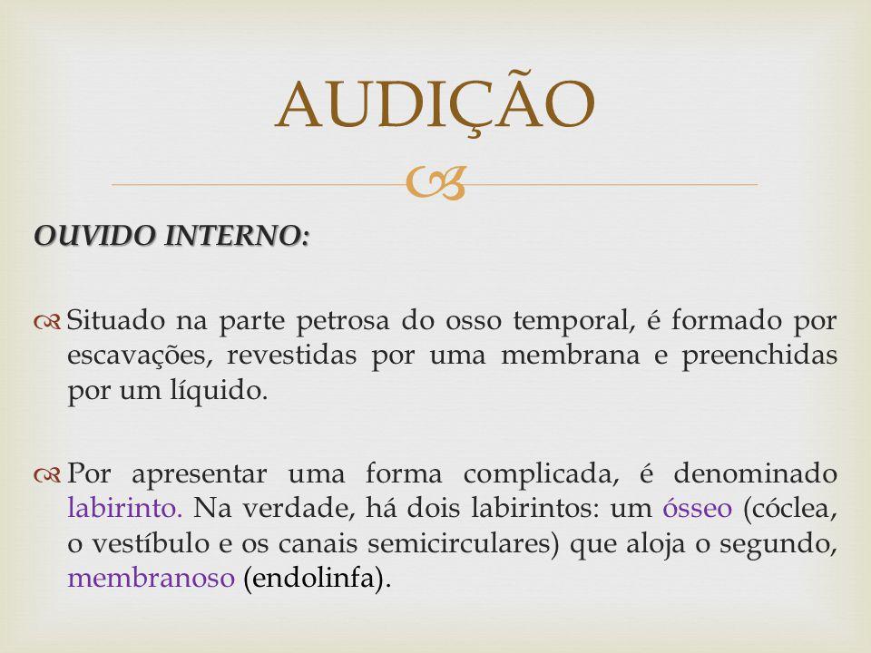 AUDIÇÃO OUVIDO INTERNO: