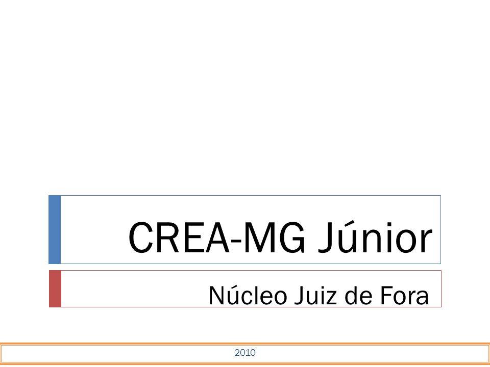 CREA-MG Júnior Núcleo Juiz de Fora 2010