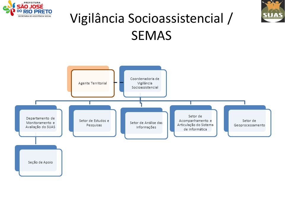 Vigilância Socioassistencial / SEMAS