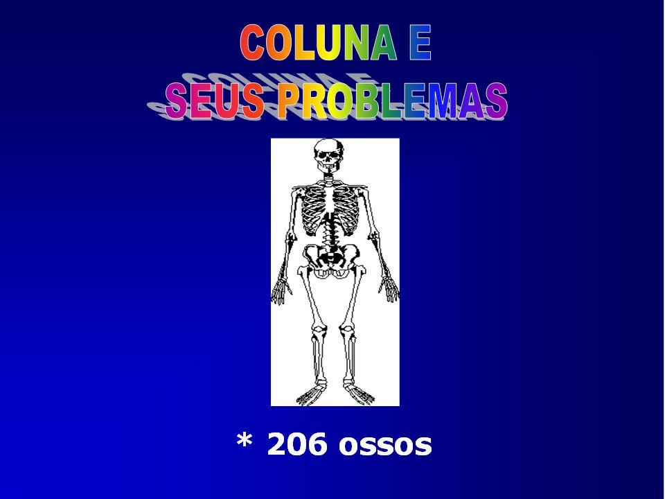 COLUNA E SEUS PROBLEMAS