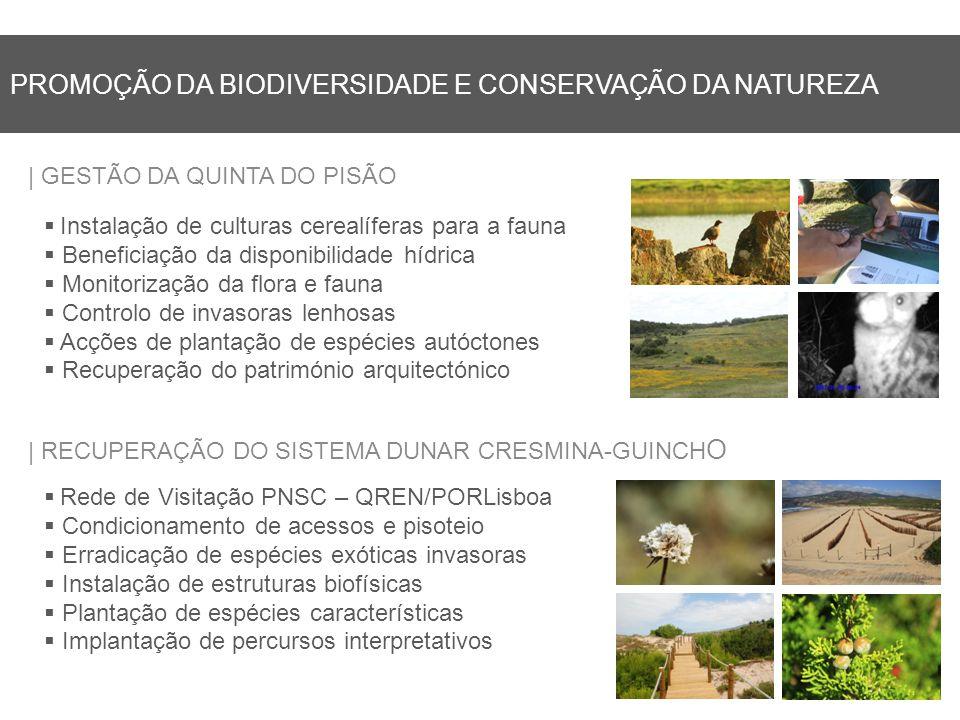 Promoção da Biodiversidade e Conservação da Natureza