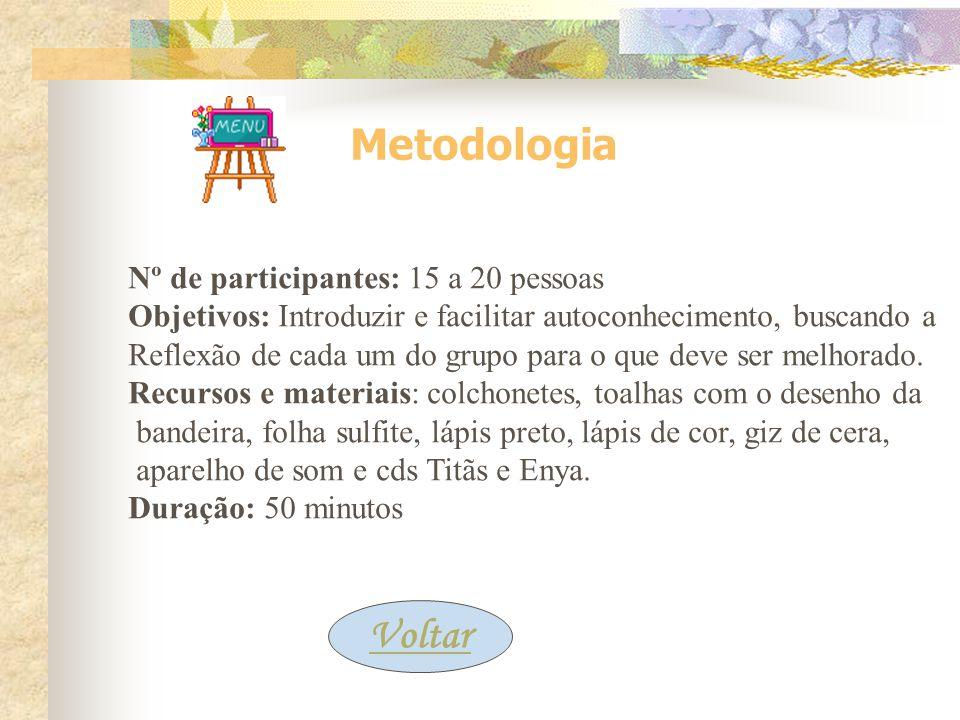 Metodologia Voltar Nº de participantes: 15 a 20 pessoas