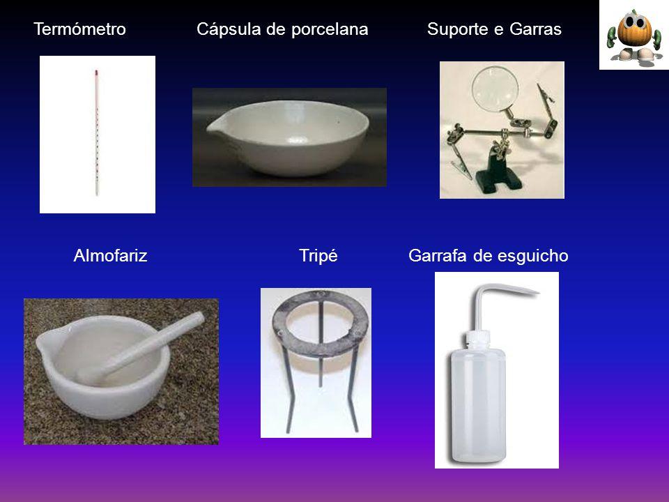 Termómetro Cápsula de porcelana Suporte e Garras