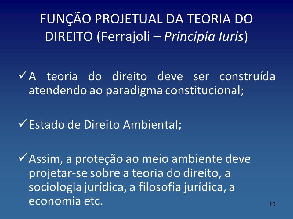 FUNÇÃO PROJETUAL DA TEORIA DO DIREITO (Ferrajoli – Principia Iuris)