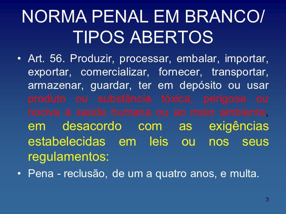 NORMA PENAL EM BRANCO/ TIPOS ABERTOS