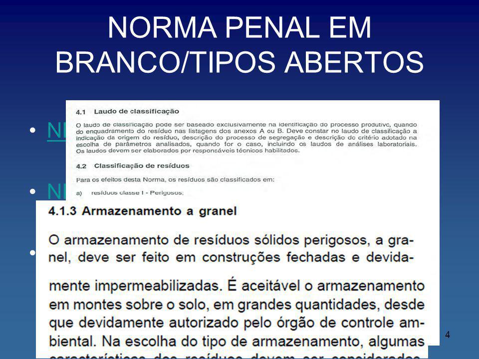 NORMA PENAL EM BRANCO/TIPOS ABERTOS