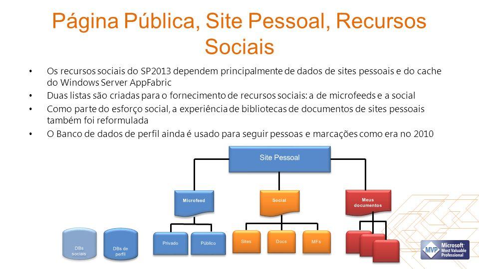 Página Pública, Site Pessoal, Recursos Sociais