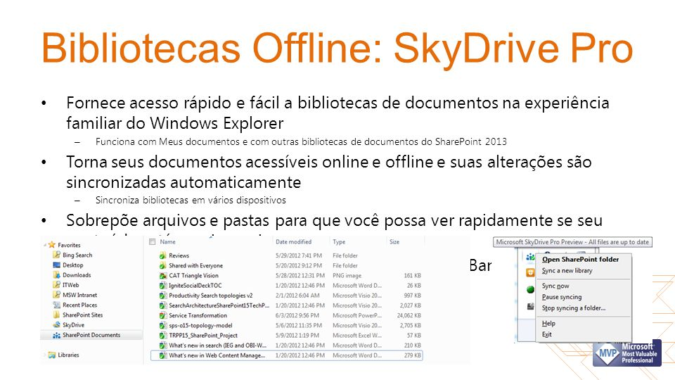 Bibliotecas Offline: SkyDrive Pro