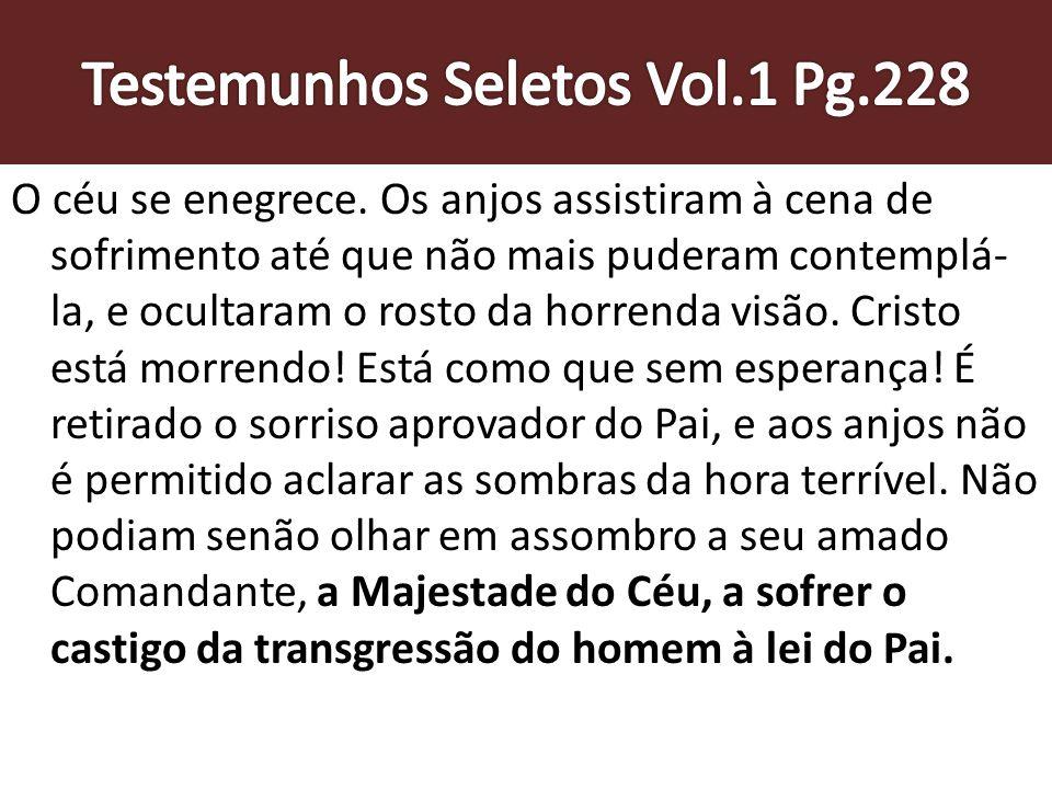 Testemunhos Seletos Vol.1 Pg.228