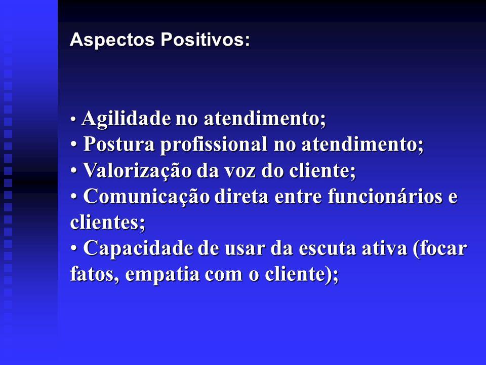Postura profissional no atendimento; Valorização da voz do cliente;