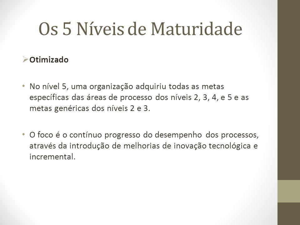 Os 5 Níveis de Maturidade