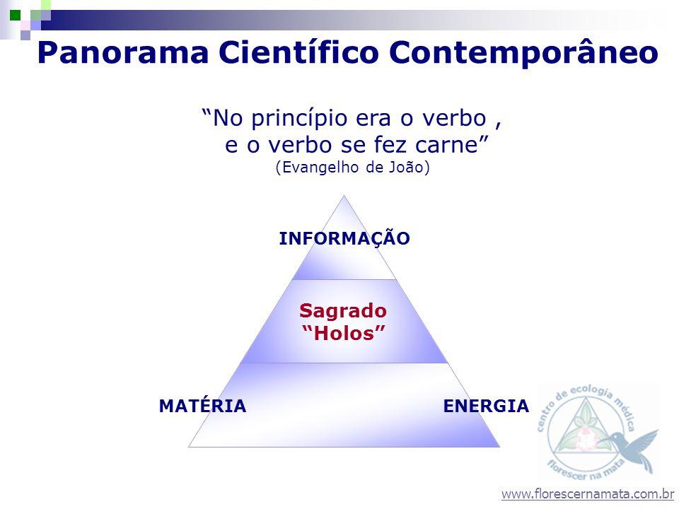 Panorama Científico Contemporâneo