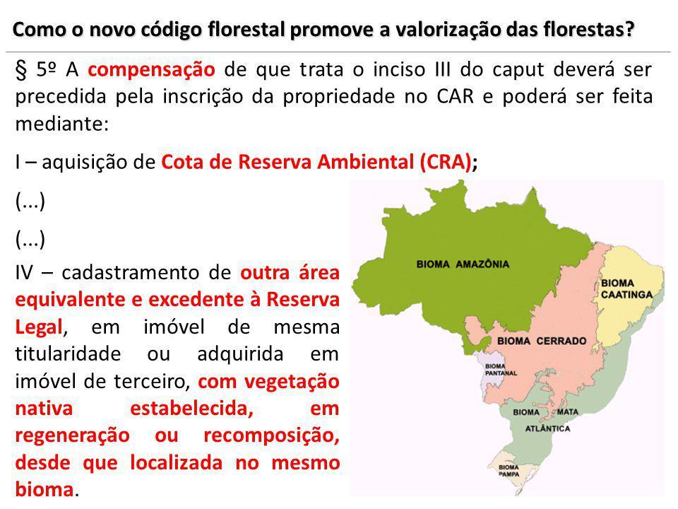 Como o novo código florestal promove a valorização das florestas