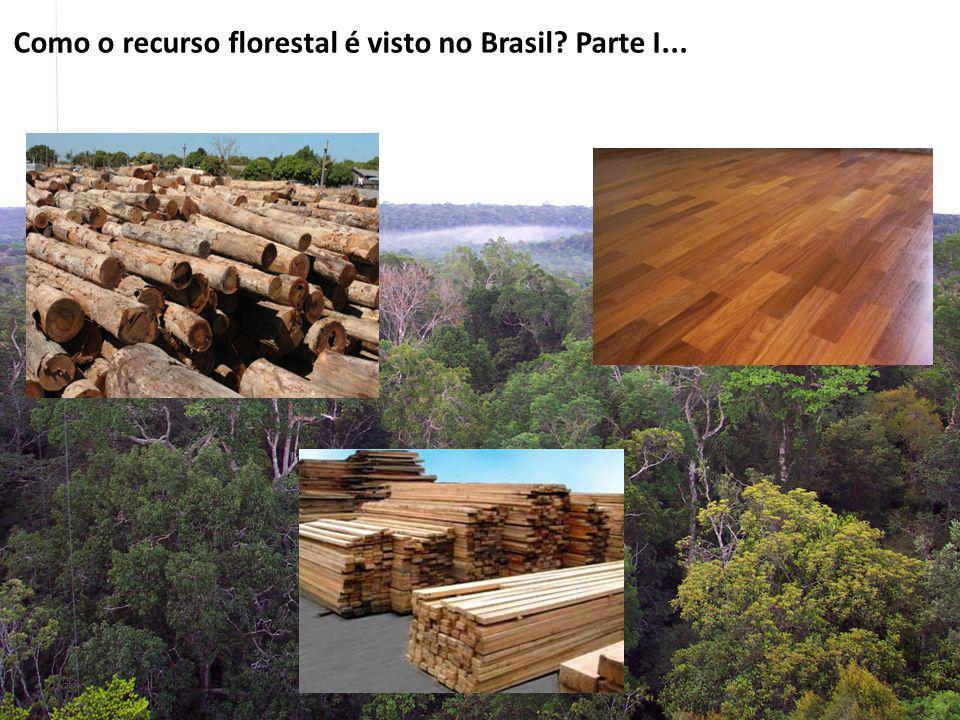 Como o recurso florestal é visto no Brasil Parte I...