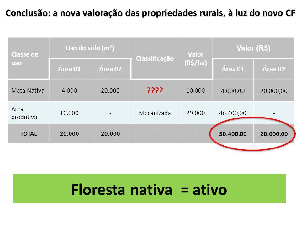 Floresta nativa = ativo