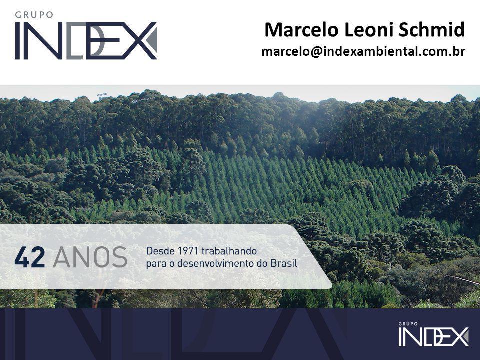 Marcelo Leoni Schmid marcelo@indexambiental.com.br
